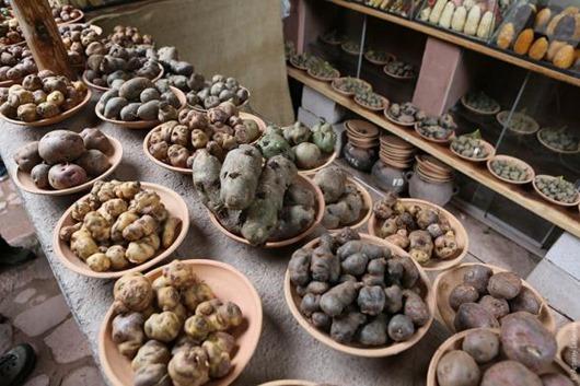 Что приготовить из пангасиуса и картошки