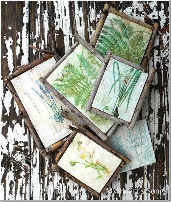 Botanicals - Decoupage Project