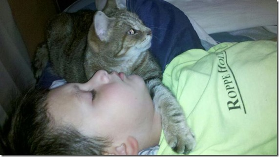 Jakobi sleeping with the cat