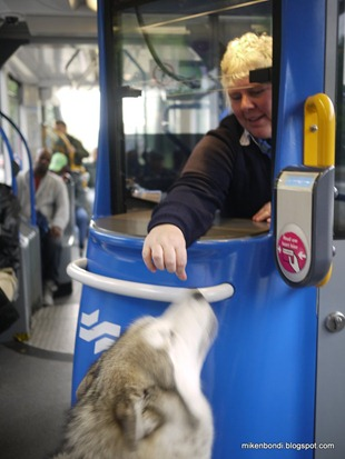 Munson woos the tram ticket seller