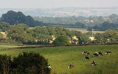مقاطعة ديفون في إنجلترا