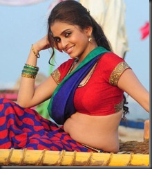 ACTRESS SHEENA SHAHABADI NEW PHOTOS sexy stills