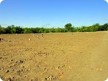 3-field