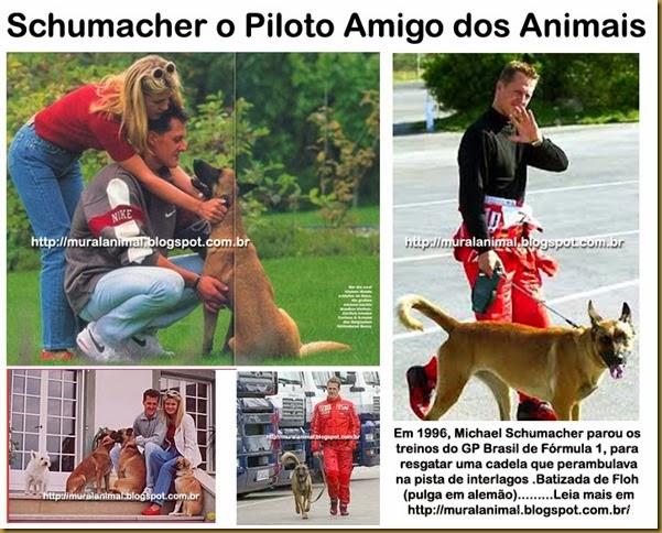 Schumacher_Piloto_Animais