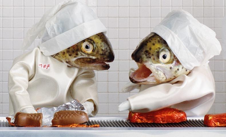 fish-art-7