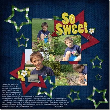 Mitchell_2011-07-14_WildRaspberries web