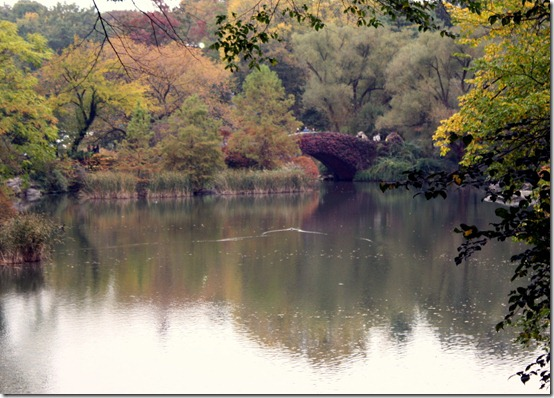 fall-central-park-colors-foiliage