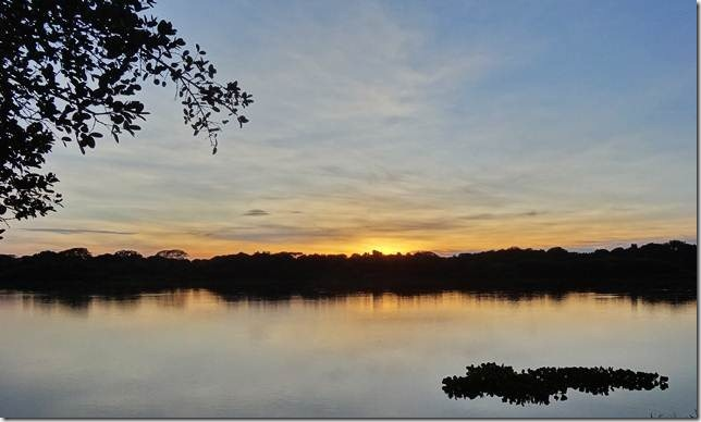 Pantanal_DSC08559