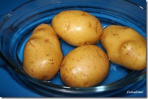 1-1-amanida patata i variants-1-1