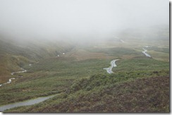 goat road and mist--maybe going over one of the passes
