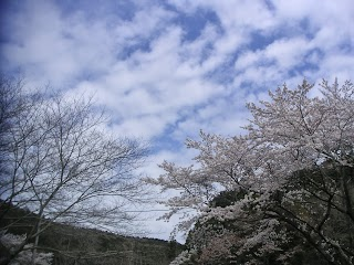 20140402-023.jpg