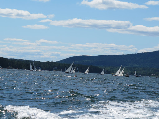 What a beautiful day for a sail.  That must be a regatta.