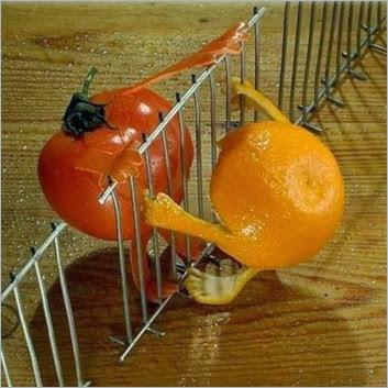 formas-de-pelar-una-naranja-con-arte-05-e1269590948504