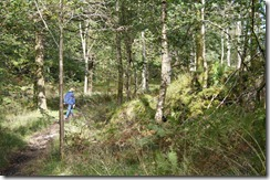 Hill top walk--Bishop Woods