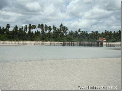 Praia de São Miguel dos Milagres Alagoas Paraíso Azul