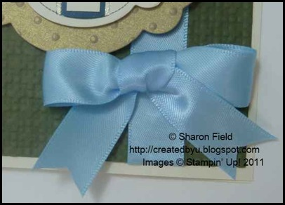P1100992_pretty_bashful_Blue_double_loop_Bow_With_proper_Tails
