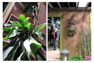 Boston Flower & Garden Show Wall Gardens