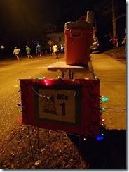 Jingle Bell Run 4 (2)