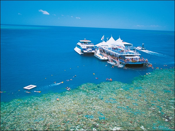 Fantasea Cruises