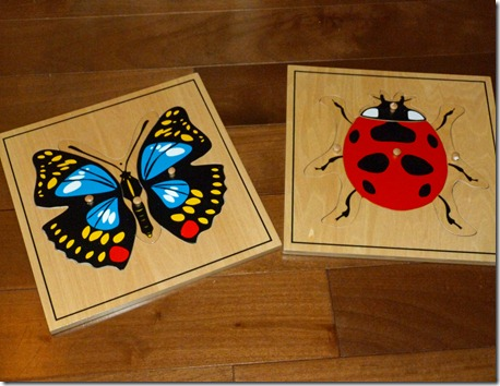 Ladybug and Butterfly Puzzles