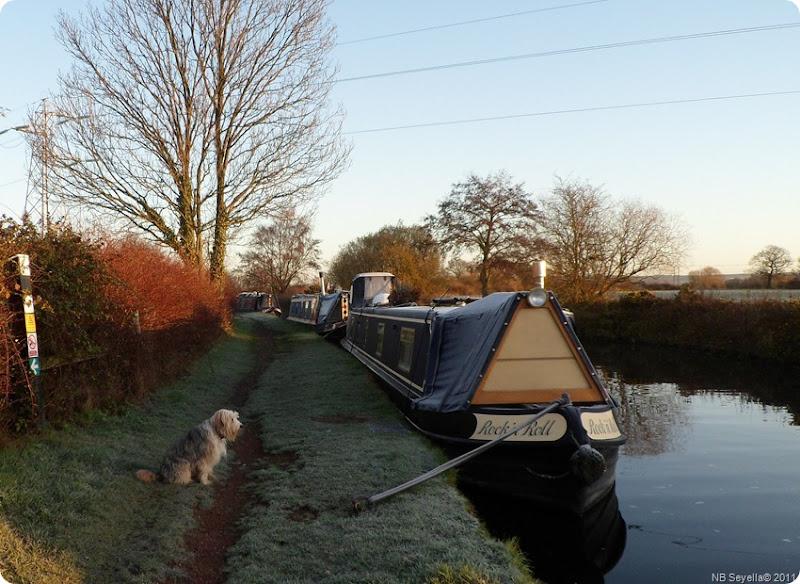 SAM_0020 Frosty Morn