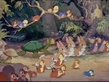 07 les animaux de la forêt