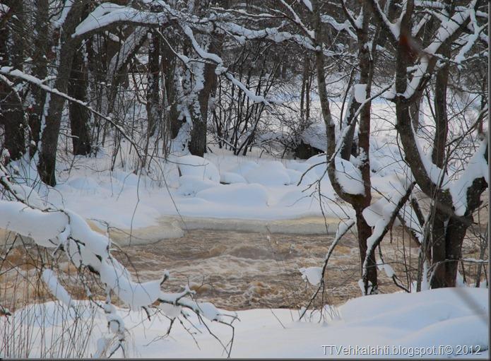 talvipäivä seisauksen jäkeinen aamu päivä 038