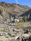 Hiking Trail to Fortynine Palms Oasis (Photo by Bob Moore)