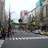 main street in akihabara in Akihabara, Tokyo, Japan