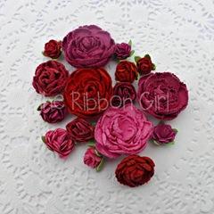 FloribundaRaspberry