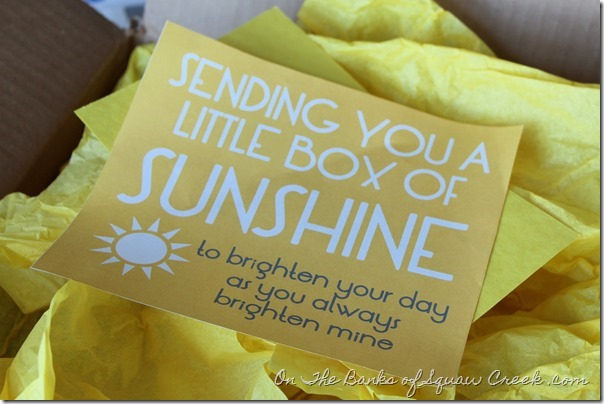 Box of Sunshine Free Printable