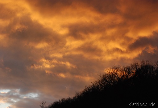 1-13-12a Sandy Point sunset-kab