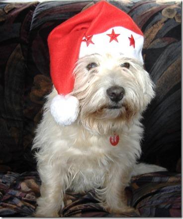 2006_11 Weihnachtsmax (1)