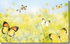Beautiful-Spring-spring-27865667-1920-1200