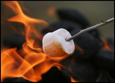 RoastingMarshMellows