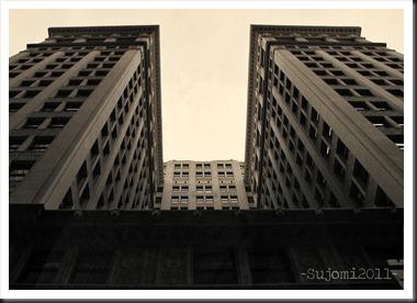 2011 07 24 IMG_0085w