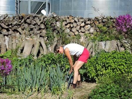 20140908_152455-christina-garden