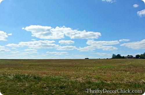 kentucky fields