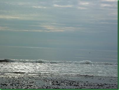 Ocean front walk 014