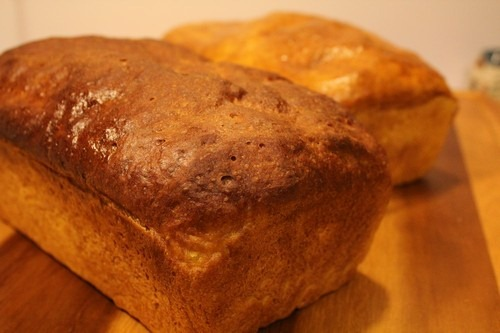 pumpkin-yeast-bread000001