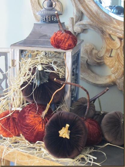 silvercrest pumpkins vel 063