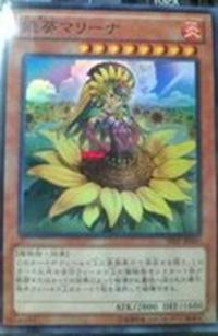 PrincessAoiMarina-SHSP-JP-OP