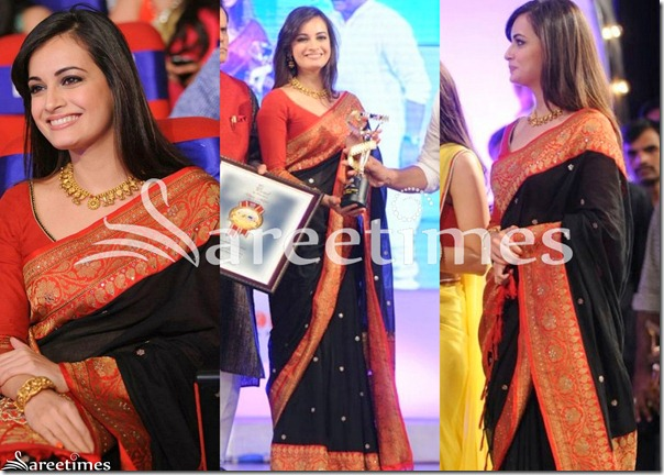 Dia_Mirza_Black_Silk_Saree