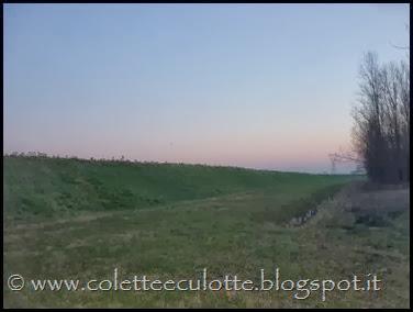 Passeggiata al Dosolo - 1 gennaio 2013 (65)