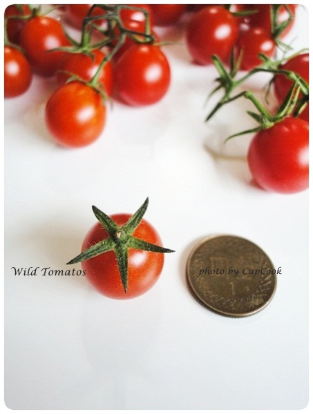 tomato (25)