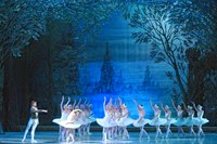 Swan Lake - State ballet Theatre of Russia