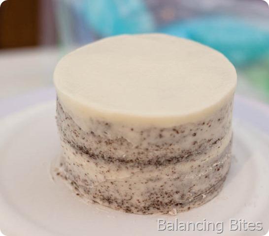 Crumb Coat Cake-Balancing Bites