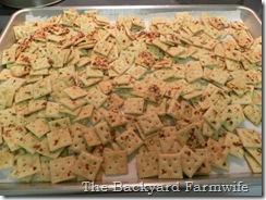 spicy ranch saltines 02
