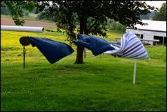 clothesline 13