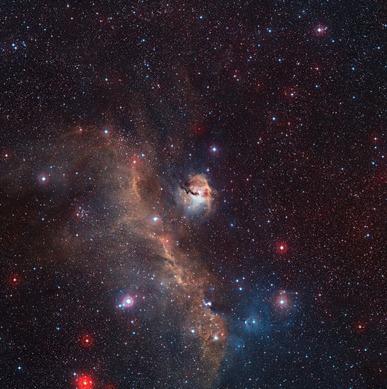 vista de campo amplo de toda a Nebulosa da Gaivota